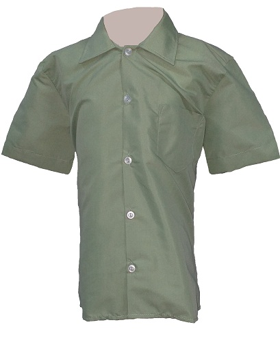 green boys short sleeve shirt 10010